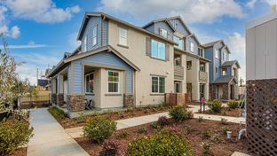 Plan 1 - Uptown in Livermore: Livermore, California - Taylor Morrison