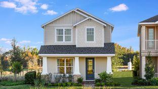 Newberry - Starkey Ranch - Stansil Park: Odessa, Florida - Taylor Morrison