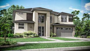 5809 - Bridgeland 60s, Parkland Village - Darling: Cypress, Texas - Taylor Morrison