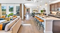 Raburn Reserve 50s by Taylor Morrison in Houston Texas