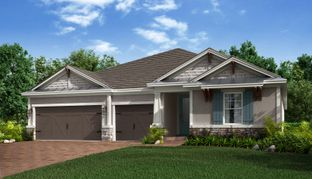 Saint Croix - Starkey Ranch - Whitfield Preserve: Odessa, Florida - Taylor Morrison