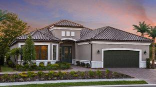 Pallazio - Solivita: Kissimmee, Florida - Taylor Morrison