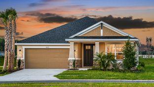 Saint Thomas - WaterGrass: Wesley Chapel, Florida - Taylor Morrison