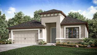 Saint Thomas - Park East at Azario: Lakewood Ranch, Florida - Taylor Morrison