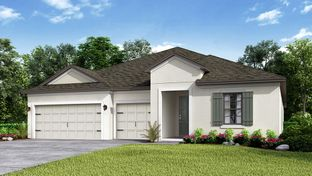 Saint Croix - Park East at Azario: Lakewood Ranch, Florida - Taylor Morrison