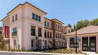 Residence 2 - Ov8tion in Sunnyvale: Sunnyvale, California - Taylor Morrison