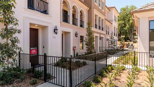 Residence 3 - Ov8tion in Sunnyvale: Sunnyvale, California - Taylor Morrison