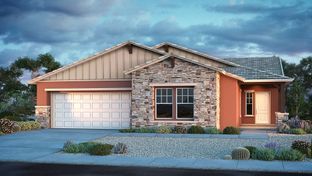 Windsor - Legado Landmark Collection: Queen Creek, Arizona - Taylor Morrison