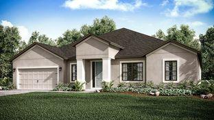 Abaco - Park East at Azario: Lakewood Ranch, Florida - Taylor Morrison