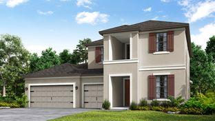 Caladesi - Park East at Azario: Lakewood Ranch, Florida - Taylor Morrison