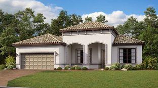 Ambra - Esplanade at Azario Lakewood Ranch: Lakewood Ranch, Florida - Taylor Morrison