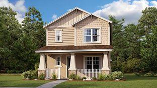 Ashwood - Starkey Ranch - Stansil Park: Odessa, Florida - Taylor Morrison