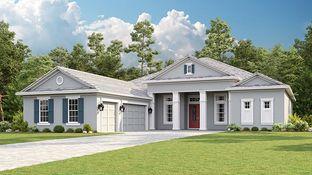 Beacon - Esplanade at Wiregrass Ranch: Wesley Chapel, Florida - Taylor Morrison