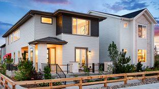 The Columbia - Canyon Village: Highlands Ranch, Colorado - Taylor Morrison
