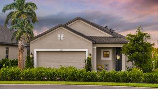 Saint Vincent - Park East at Azario: Lakewood Ranch, Florida - Taylor Morrison