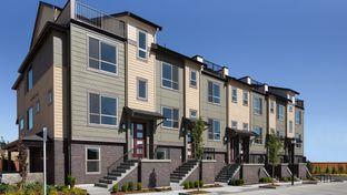 G16 - Westridge Townhomes North: Medina, Washington - Taylor Morrison