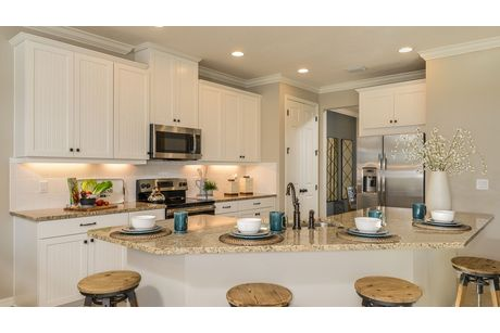 Kitchen-in-Bonaire-at-Arbor Lakes on Palmer Ranch-in-Sarasota