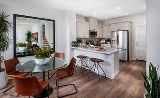 NUVO Artisan Square by The New Home Company in Sacramento California