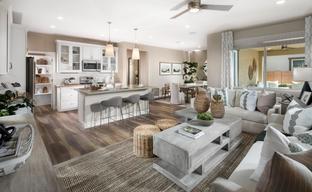 Centella at Estrella by The New Home Company in Phoenix-Mesa Arizona