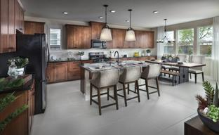 Traditions at Poppy Lane by Tim Lewis Communities in Sacramento California