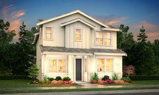 Residence 1 - Revival: Woodland, California - Tim Lewis Communities