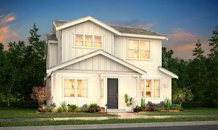 Residence 4 - Revival: Woodland, California - Tim Lewis Communities