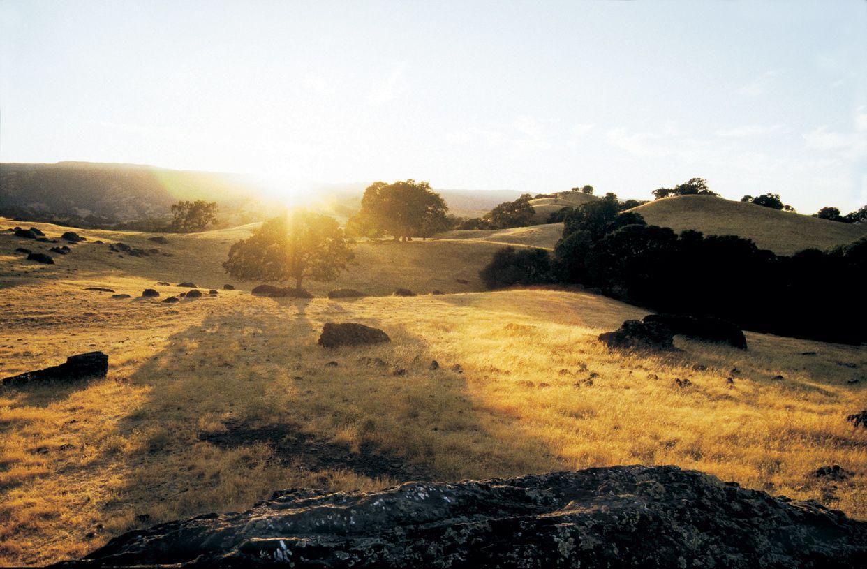 'Oakcrest' by Toll Brothers - CA-Sacramento in Sacramento