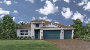 Flora - Toll Brothers at Venice Woodlands: North Venice, Florida - Toll Brothers