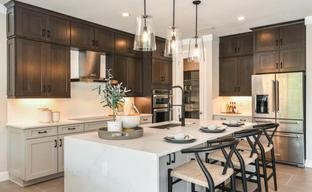 Toll Brothers at Venice Woodlands by Toll Brothers in Sarasota-Bradenton Florida