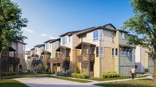 Sunrose - Parkside at Tarob Court: Milpitas, California - Toll Brothers