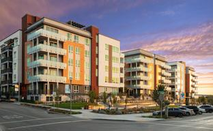 Westbourne Park at Metro Crossing by Toll Brothers in Oakland-Alameda California