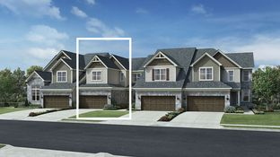 Pentwater - North Oaks of Ann Arbor - The Villa Collection: Ann Arbor, Michigan - Toll Brothers