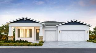 Skybrook - Sterling Grove - Charlotte Collection: Surprise, Arizona - Toll Brothers