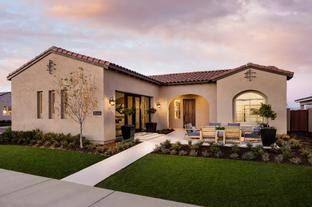 Davidson - Sterling Grove - Concord Collection: Surprise, Arizona - Toll Brothers