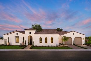 Hastings Spanish - Sterling Grove - Pasadena Collection: Surprise, Arizona - Toll Brothers
