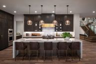 Arden by Toll Brothers in Washington Virginia
