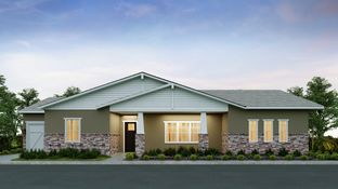 Warwick - Sterling Grove - Providence Collection: Surprise, Arizona - Toll Brothers