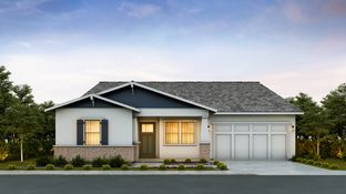 Eastwood - Sterling Grove - Charlotte Collection: Surprise, Arizona - Toll Brothers