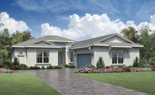 Regency at Avenir - Tradewinds Collection by Toll Brothers in Palm Beach County Florida