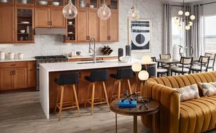 Regency at Montaine - Jefferson Collection by Toll Brothers in Denver Colorado