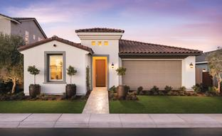 Sterling Grove - Alexandria Collection by Toll Brothers in Phoenix-Mesa Arizona