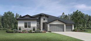 Montview - Toll Brothers at Macanta: Castle Rock, Colorado - Toll Brothers