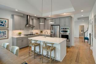 Vanleer - North Oaks of Ann Arbor - The Villa Collection: Ann Arbor, Michigan - Toll Brothers