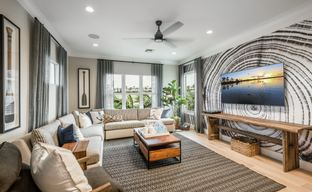 Edison East - Executive Collection by Toll Brothers in Jacksonville-St. Augustine Florida