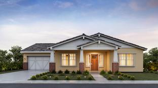 St Helena - Sterling Grove - Sonoma Collection: Surprise, Arizona - Toll Brothers
