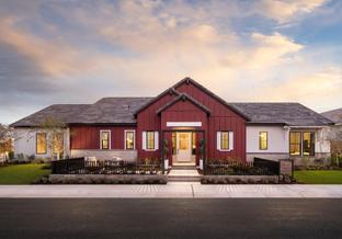 Midwood - Sterling Grove - Concord Collection: Surprise, Arizona - Toll Brothers