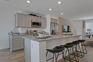 Quartz Plan 330 - Mosaic: Las Vegas, Nevada - Touchstone Living