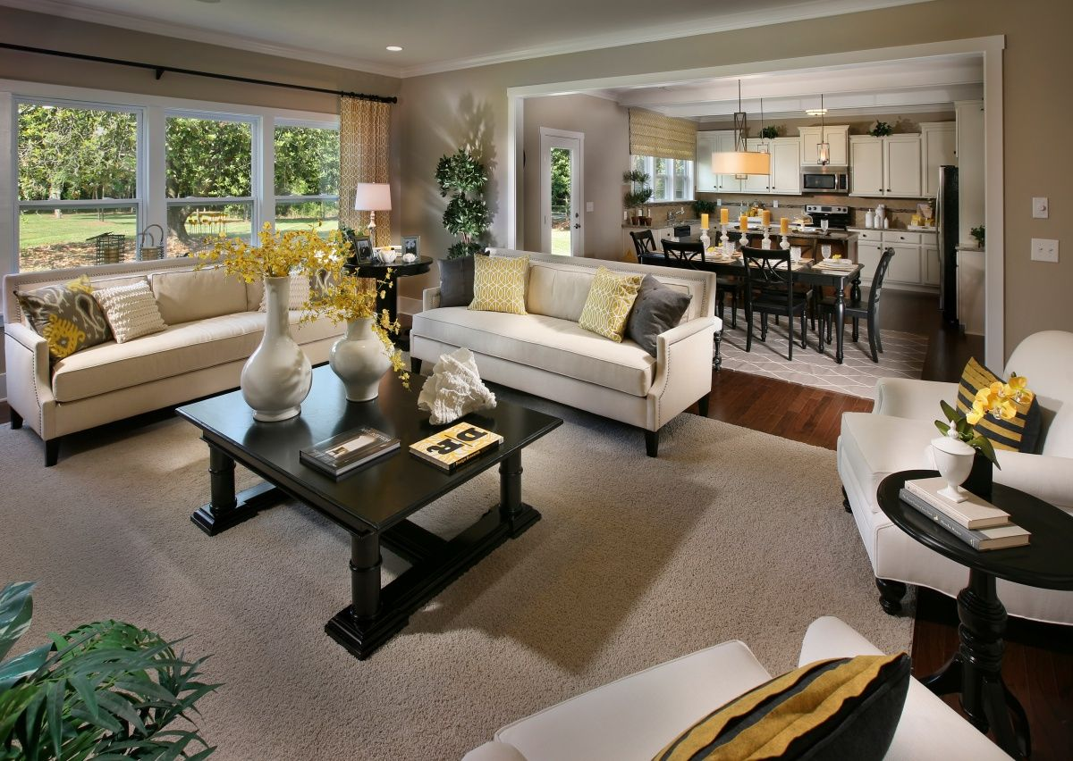Living Area featured in The Winslow By True Homes - Charlotte