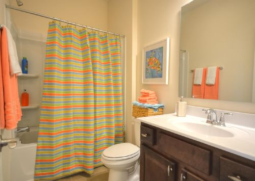 Bathroom-in-The Dobson-at-Grandview-in-Albemarle