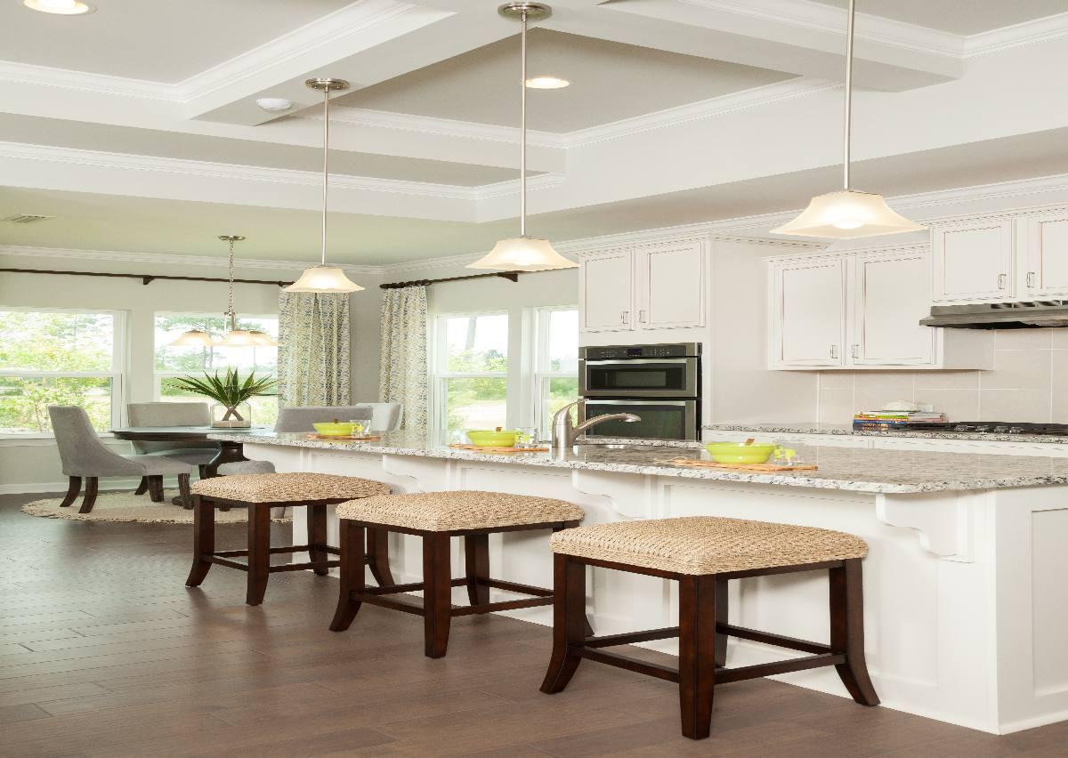 'Rourk Woods' by True Homes - Coastal in Wilmington